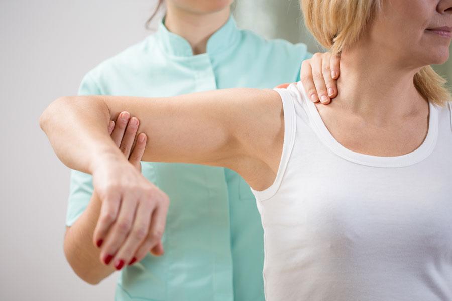 chiropractor brevard